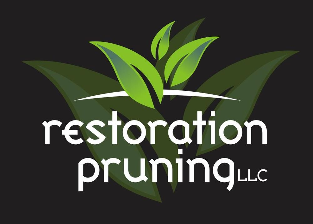 Restoration Pruning: 3583 Hwy 101, Gearhart, OR
