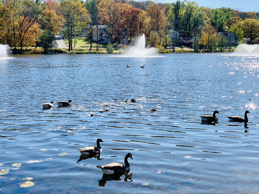 Watchung Lake: Mountain Blvd & Stirling Rd, Watchung, NJ