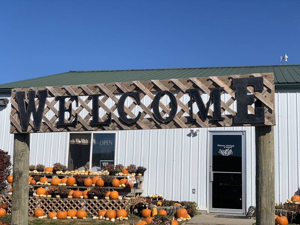 Ditmars Orchard & Vineyard: 19475 225th St, Council Bluffs, IA