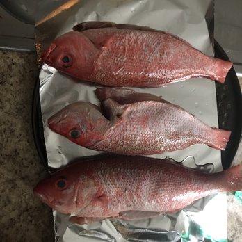 Fishy fish market 21 photos 25 reviews seafood for Fish market charlotte nc