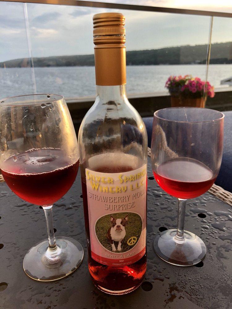 Silver Springs Winery: 4408 Rte 414, Burdett, NY