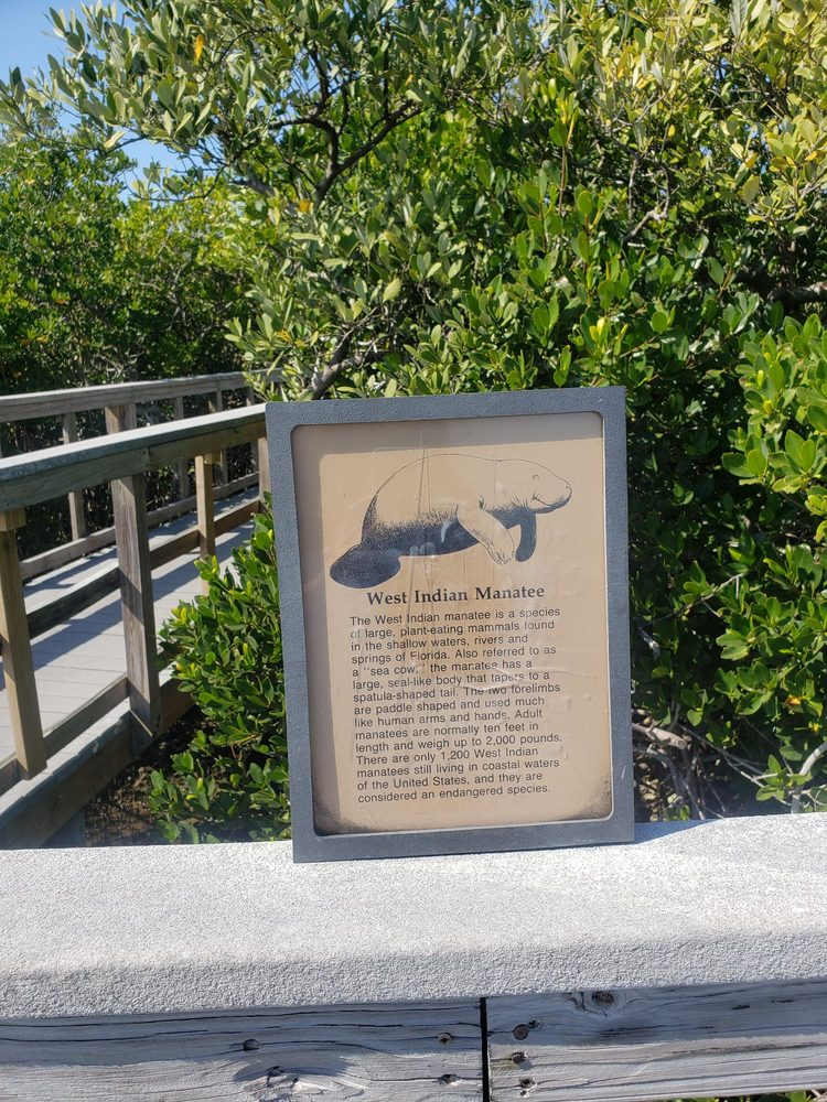 Indian Rocks Beach Nature Preserve: 903 Gulf Blvd, Indian Rocks Beach, FL