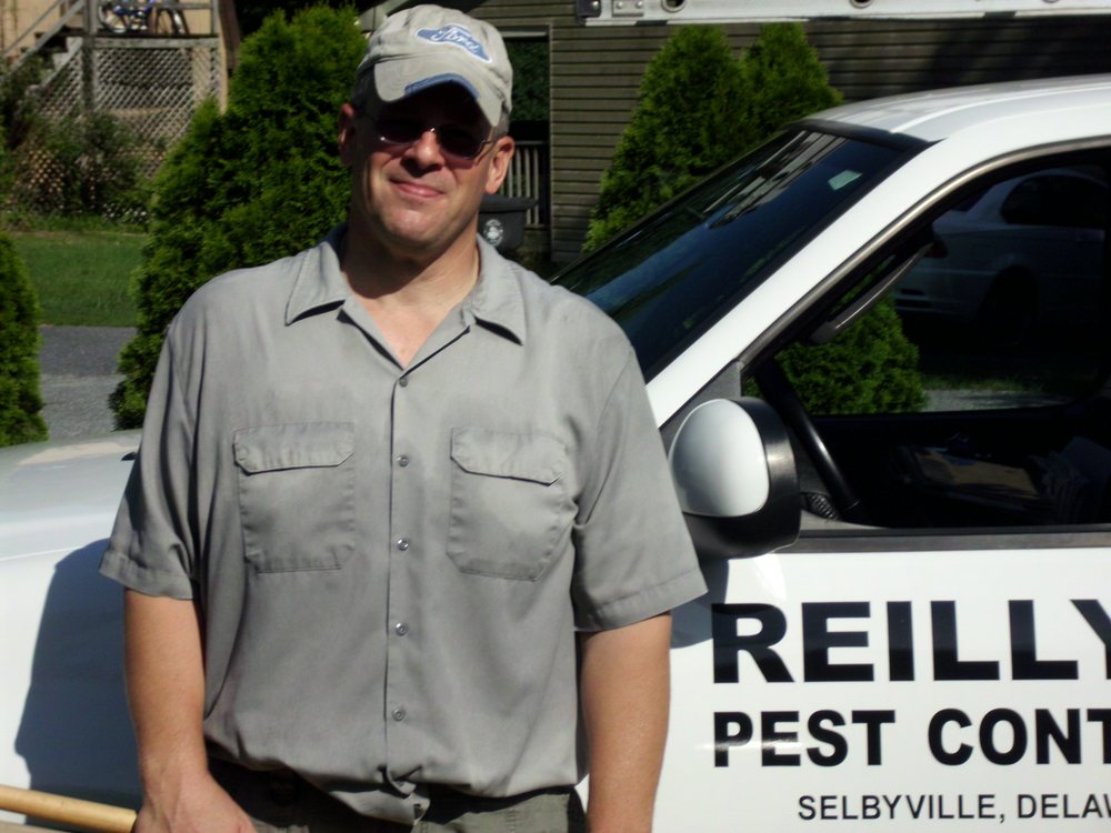 Reilly's Pest Control: 13 Walnut St, Selbyville, DE