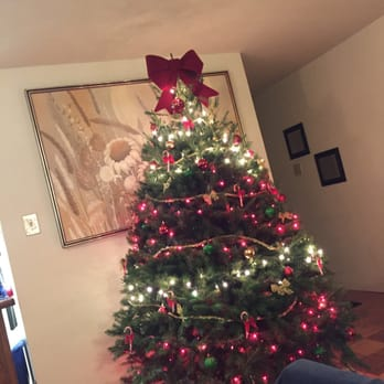 Almost Heavenly Christmas Trees - 48 Photos & 29 Reviews - Christmas ...