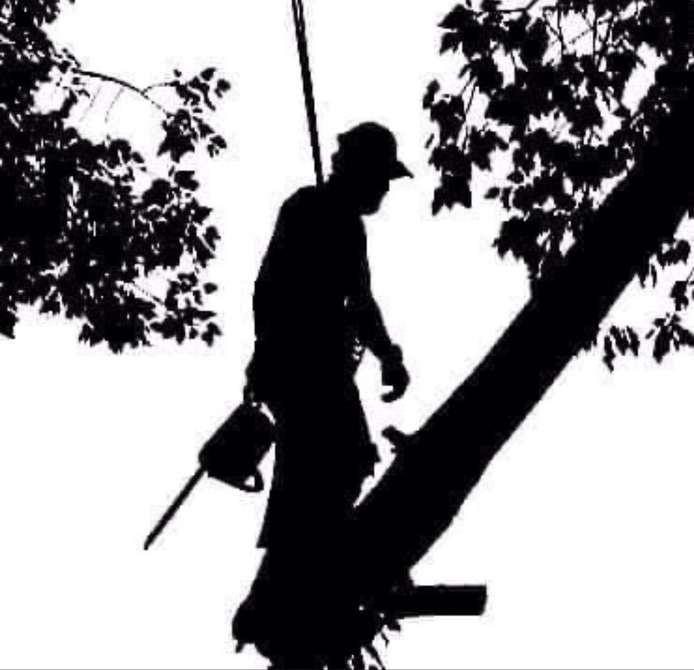 JMS Tree Service: La Sal, UT