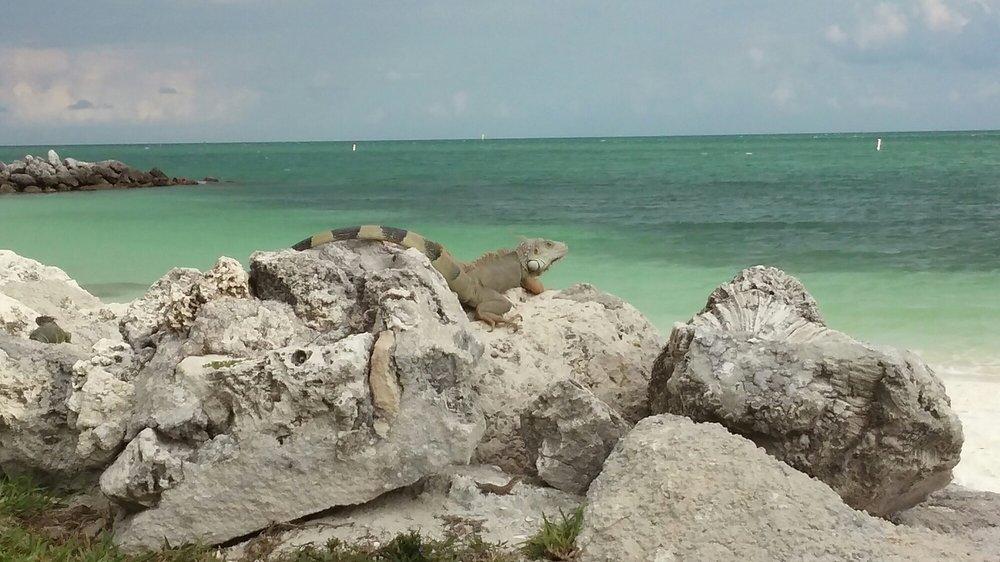 Sea Isle Condominium Association: 1101 W Ocean Dr, Key Colony Beach, FL
