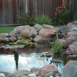 garden pond supplies. Photo Of Water Garden Pond Supplies - Tracy, CA, United States. Toine