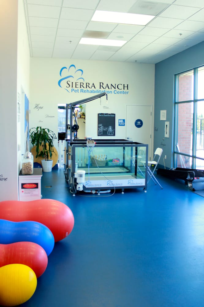 Sierra Ranch Veterinary Clinic and Pet Rehabilitation Center | 8711 Sierra College Blvd Ste 1, Roseville, CA, 95661 | +1 (916) 774-6630