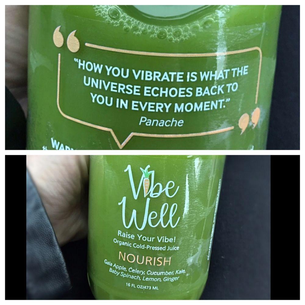Vibe Well: 495 N Fenway Dr, Fenton, MI