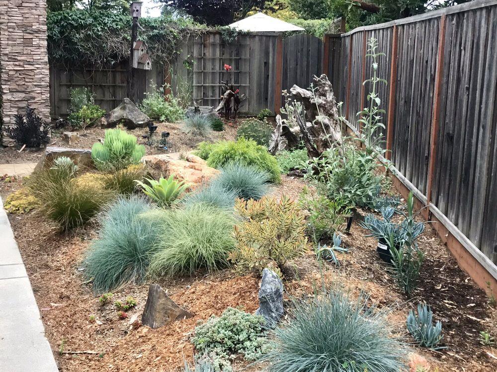Earth Art Landscape Design: Santa Cruz, CA