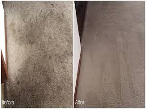 Photo Of Bmf Carpet Cleaning Katy Tx United States This Is The