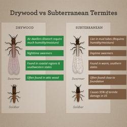Termite Patrol - Pest Control - 12155 Magnolia Ave