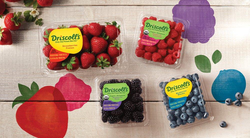 Driscoll's Berry Store: 1750 San Juan Rd, Aromas, CA