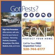 Greenshield pest control 15 reviews pest control 4595 s palo rigo pest prevention solutioingenieria Choice Image