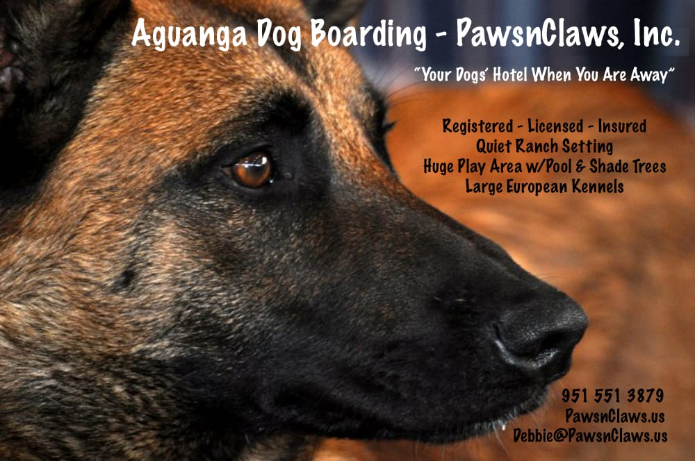 PawsnClaws Dog Boarding: 42480 Wilson Valley Rd, Aguanga, CA