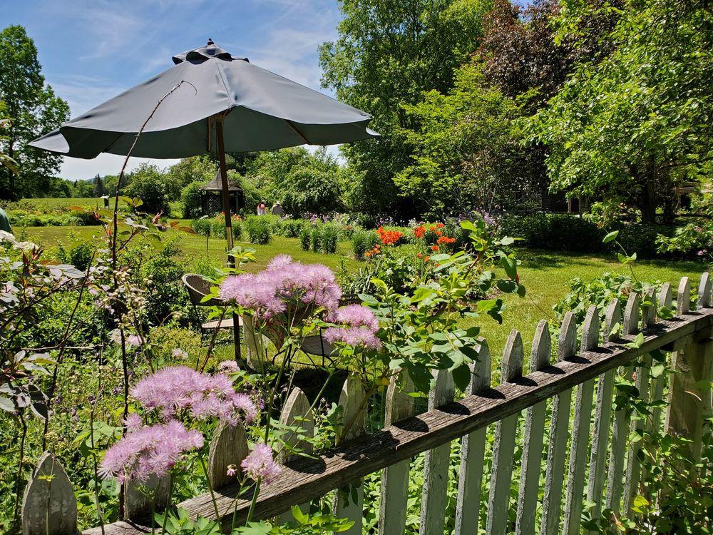 Perennial Pleasures Nursery & Tea Garden: 63 Brickhouse Rd, East Hardwick, VT