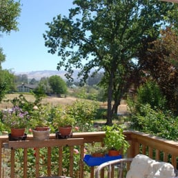 Photo Of Penngrove Gardens Cottage   Petaluma, CA, United States. Lated  Summer View