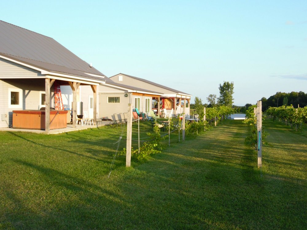 Vesco Ridge Vineyards: 167 Stratton Hill Rd, West Chazy, NY