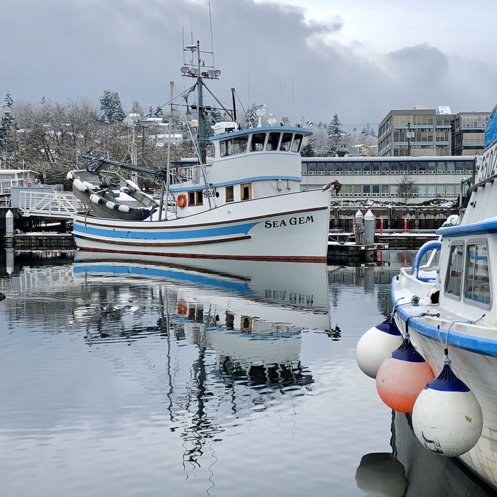 Fishermen's Terminal: 3919 18th Ave, Seattle, WA
