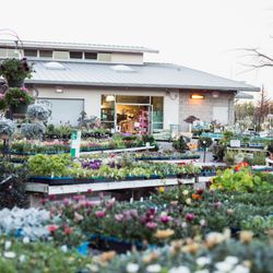 Photo Of Walter Andersen Nursery Poway Ca United States