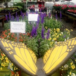 Photo Of Coppola S Garden Center South Plainfield Nj United States Some