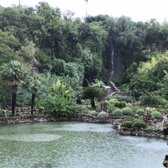 Japanese Tea Gardens 857 Photos 220 Reviews
