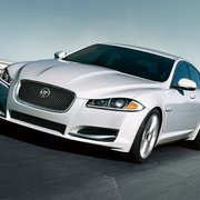 ... Photo Of Jaguar Jackson   Jackson, MS, United States ...