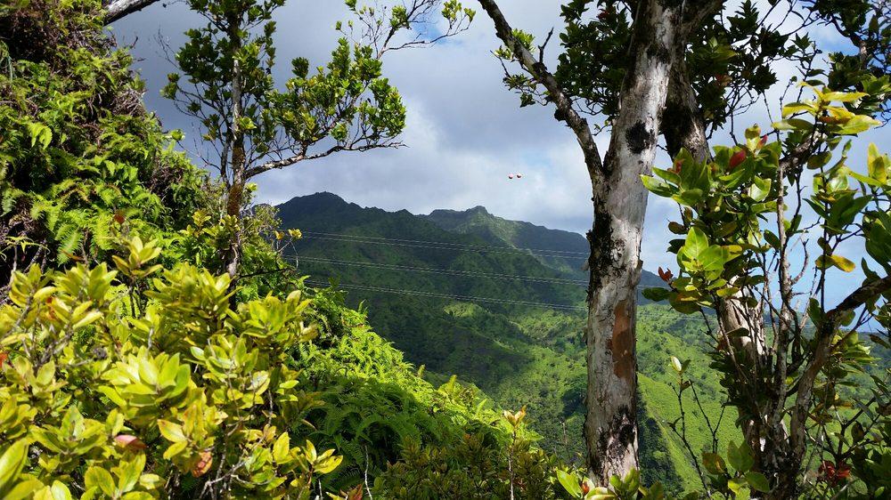 The Powerline Trail: Kapa Ka St, Princeville, HI