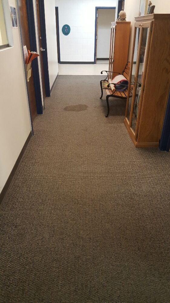 Oxi Fresh Carpet Cleaning - 30 Photos & 36 Reviews - Carpet