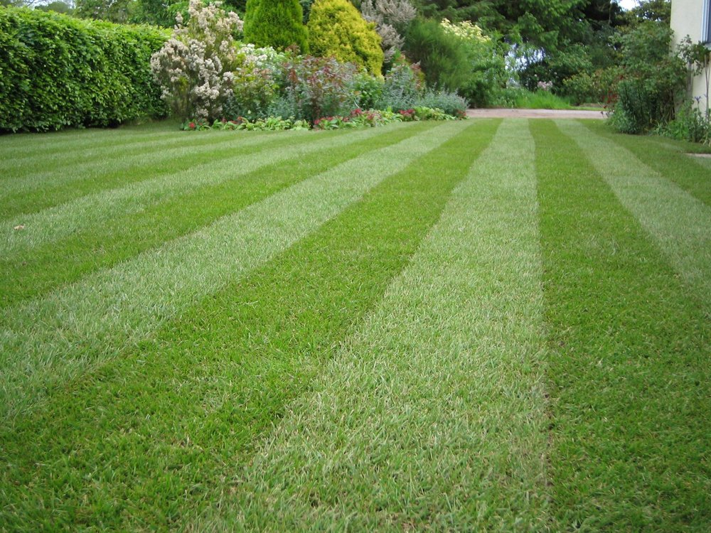 Lawn Striping Anyone Yelp