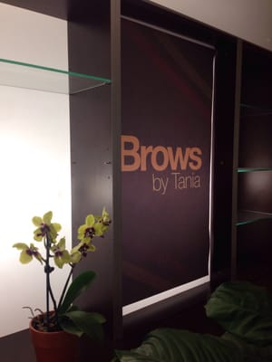 Brows By Tania