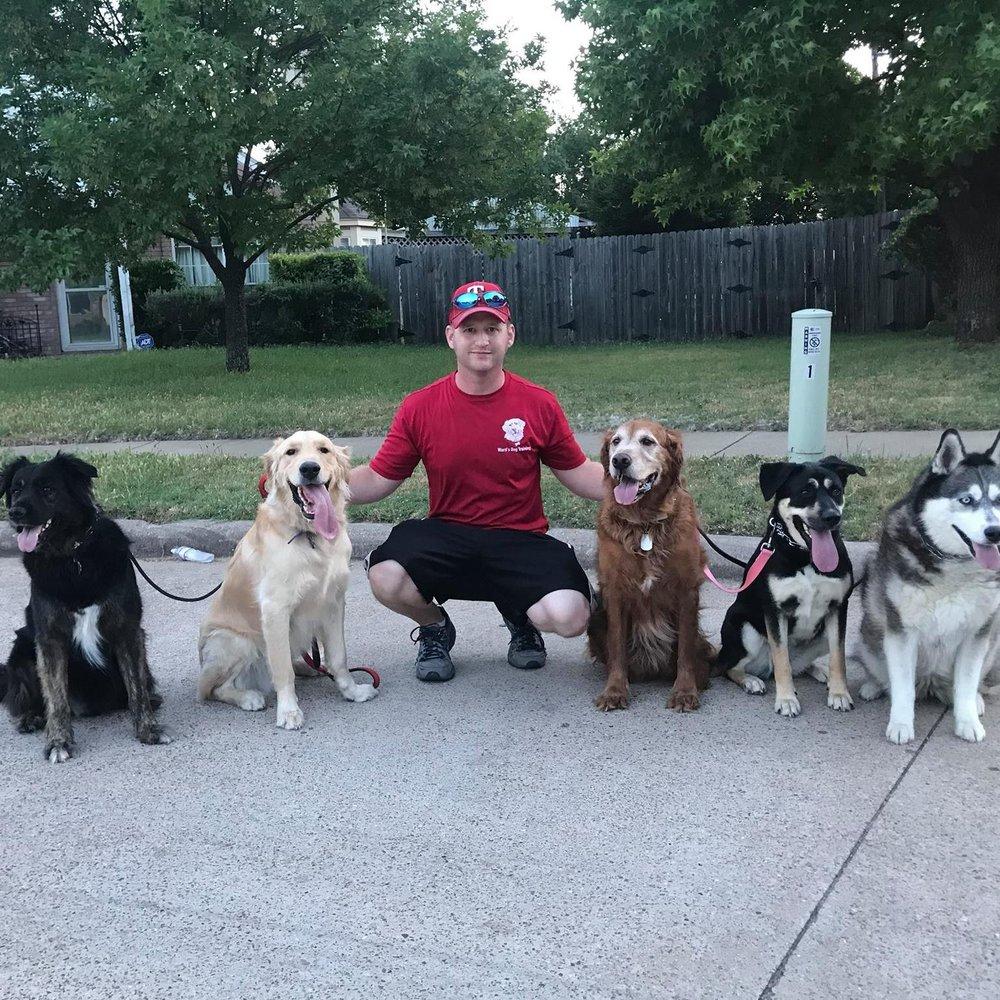 Wards Dog Training: Midlothian, TX