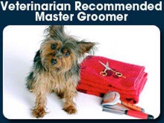 Haute Dog Grooming Franklin Tn