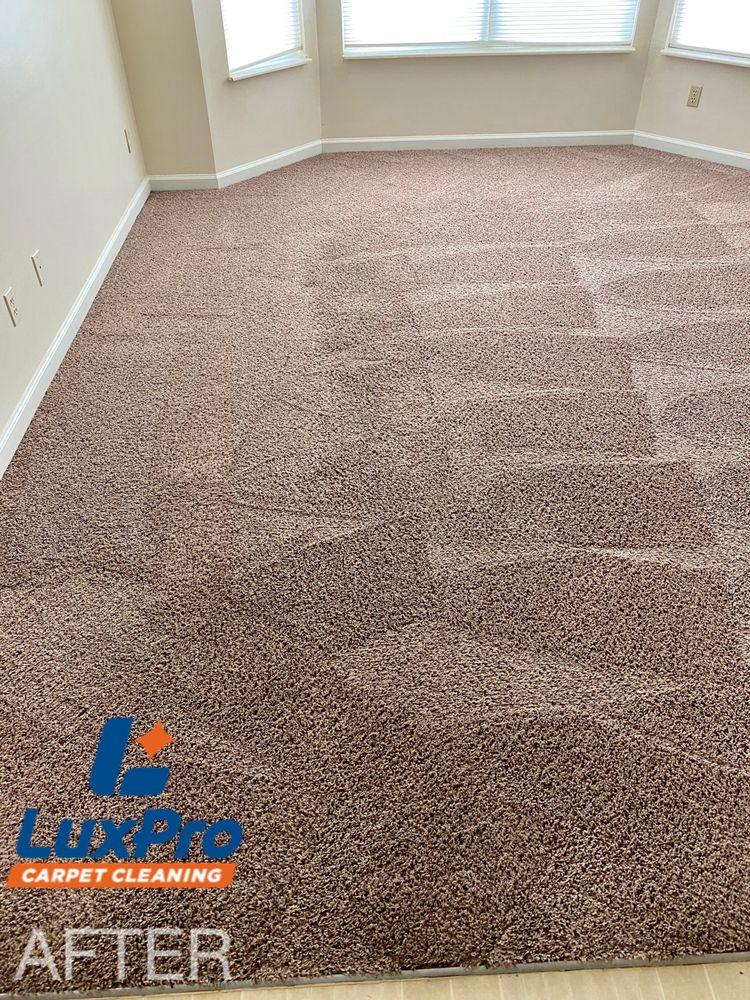 Lux Pro Carpet Cleaning: 3 Magnolia St, Niota, TN