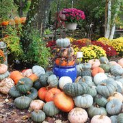 Captivating Annuals Photo Of Stonewall Garden Center   Canadensis, PA, United States ...