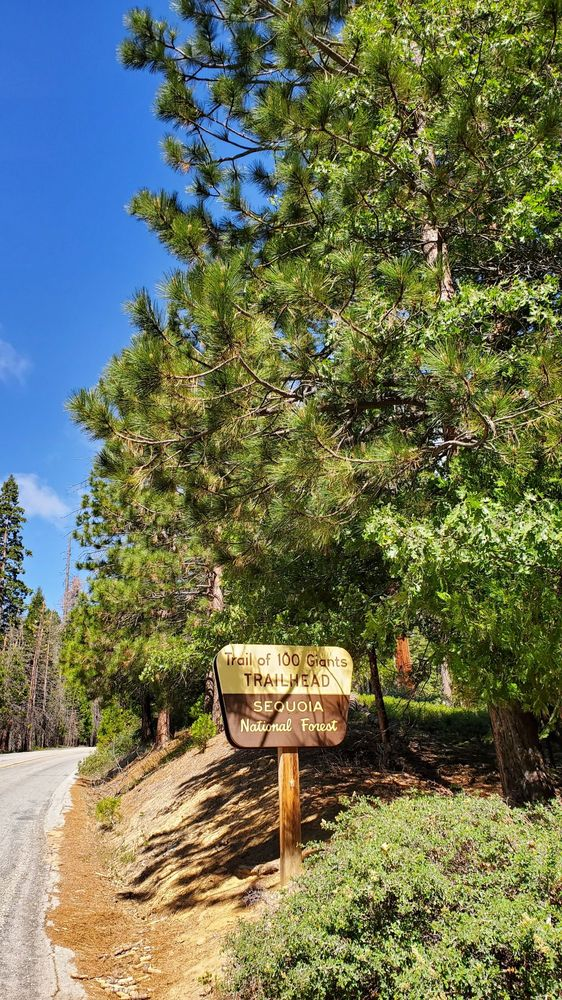 Trail of 100 Giants: Giant Sequoia National Monument, Springville, CA