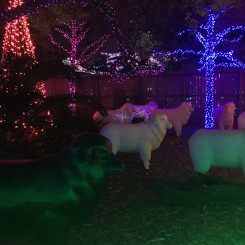 Photo Of Zoo Lights   Houston, TX, United States