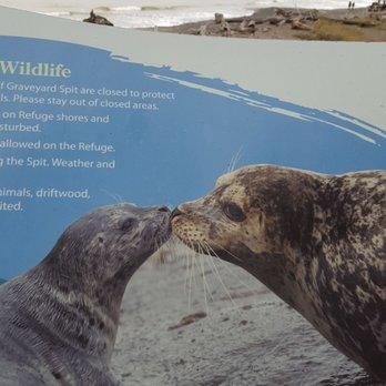 Dungeness National Wildlife Refuge - 136 Photos & 45 Reviews