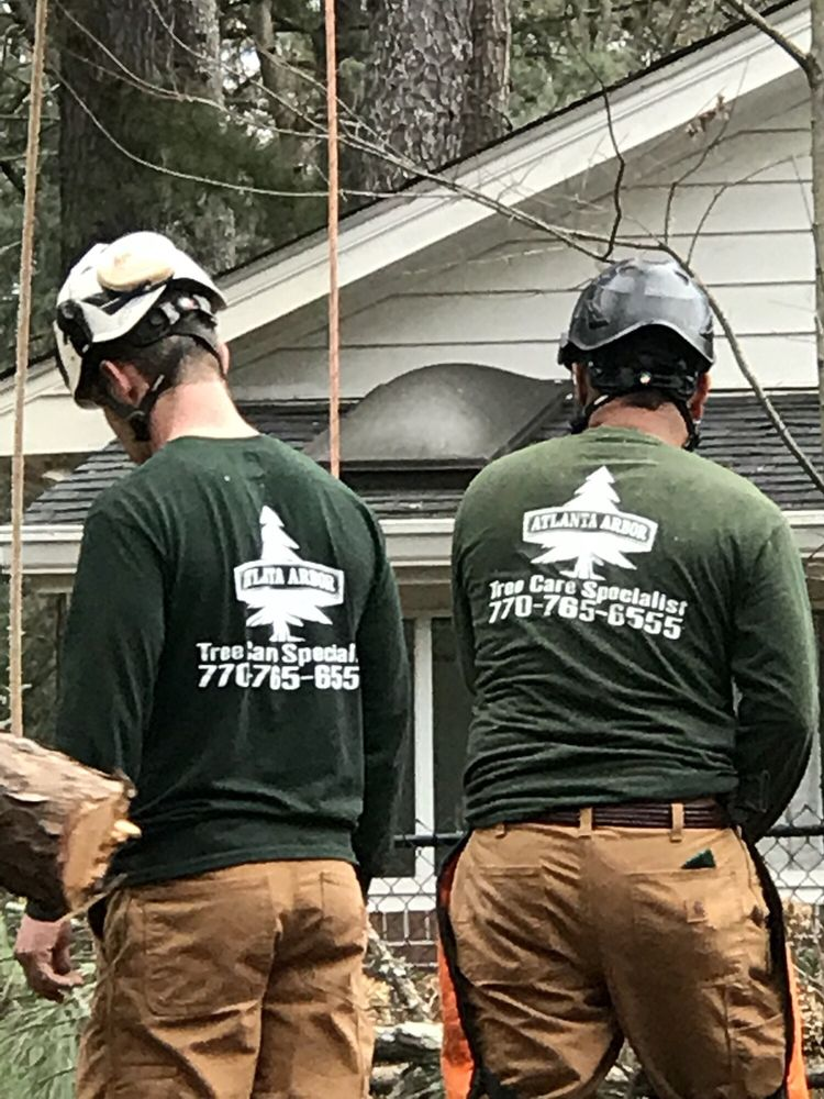 Atlanta Arbor Tree Care Specialist