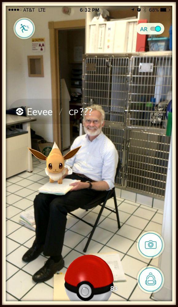 Ashburn Veterinary Hospital: 20893 Stubble Rd, Ashburn, VA