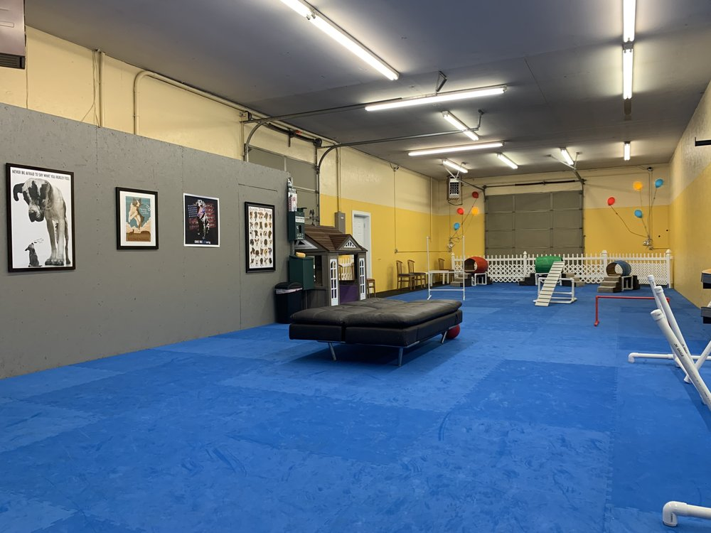 Gearhart Indoor Dog Park: 3585 Hwy 101 N, Gearhart, OR
