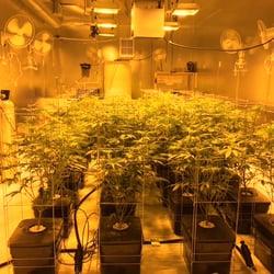 Grow Room Masters - 19 Photos - Nurseries & Gardening - Sherman Oaks ...