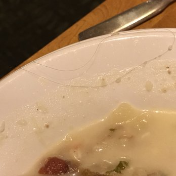 photo of olive garden italian restaurant memphis tn united states gross hair - Olive Garden On Poplar