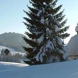 Skigebiet Steinplatte Ski Resorts Reit Im Winkl Bayern Germany