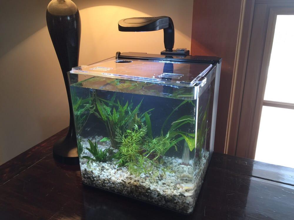 Claremont Pet & Aquarium Center: 201 Washington St, Claremont, NH