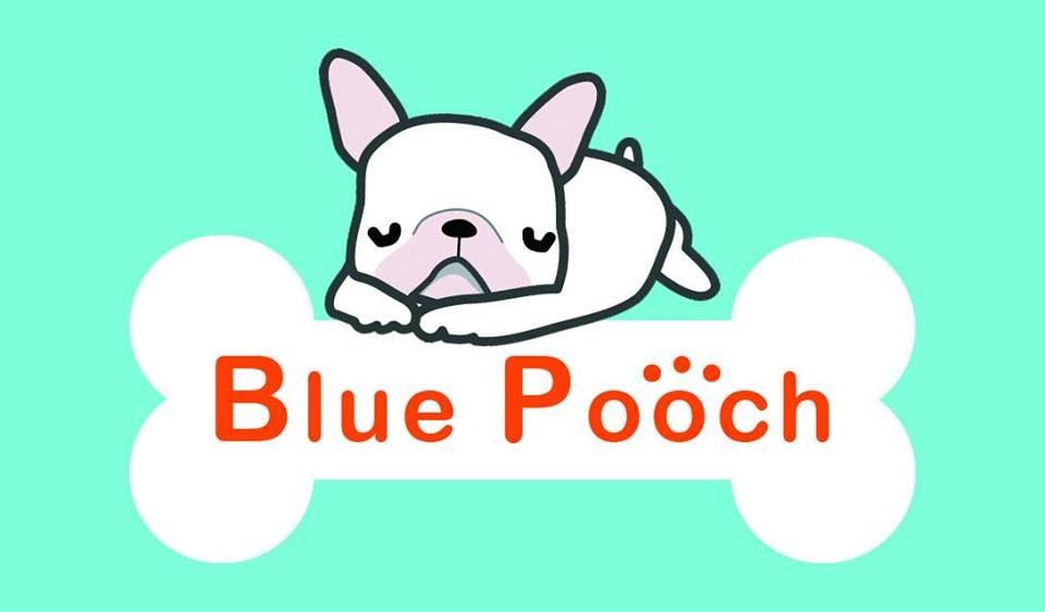 Blue Pooch