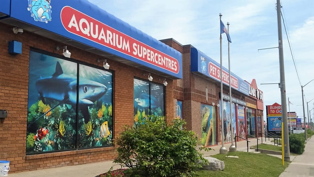 Big Al S Aquarium 44 Photos 13 Reviews Pet Shops