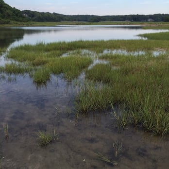 Photo Of Wood Neck Beach Falmouth Ma United States The Marshy Parts