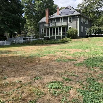 Merveilleux Photo Of TruGreen Lawn Care   Chelmsford, MA, United States. After Hiring  TruGreen