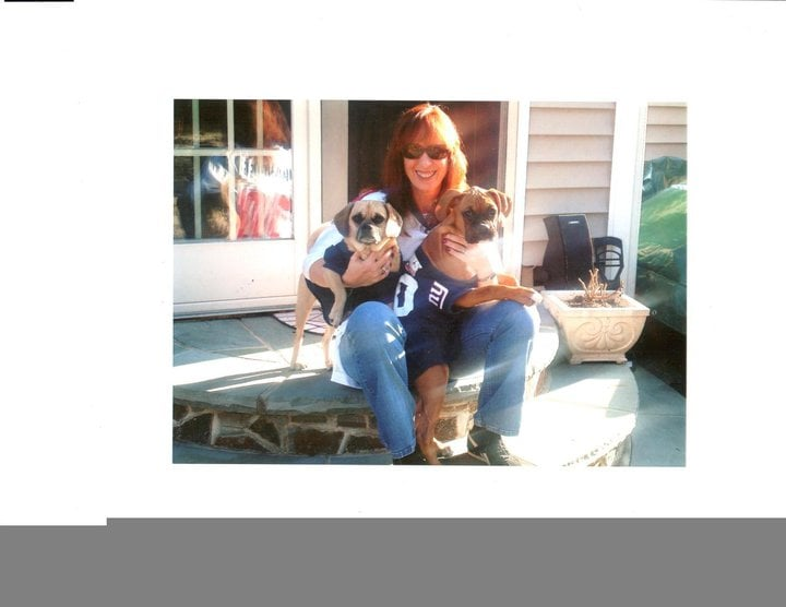 Wagging Tails Dog Walking & Pet Sitting Services